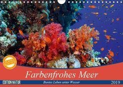 Farbenfrohes Meer (Wandkalender 2019 DIN A4 quer) von Gruse,  Sven