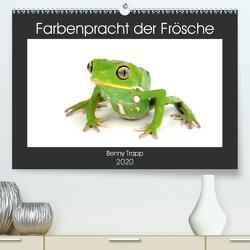 Farbenpracht der Frösche (Premium, hochwertiger DIN A2 Wandkalender 2020, Kunstdruck in Hochglanz) von Trapp,  Benny