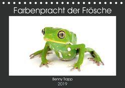 Farbenpracht der Frösche (Tischkalender 2019 DIN A5 quer) von Trapp,  Benny