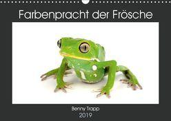 Farbenpracht der Frösche (Wandkalender 2019 DIN A3 quer) von Trapp,  Benny