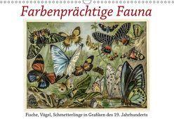 Farbenprächtige Fauna. Fische, Vögel, Schmetterlinge in Grafiken des 19 Jahrhunderts (Wandkalender 2019 DIN A3 quer) von Galle,  Jost