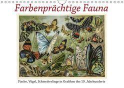 Farbenprächtige Fauna. Fische, Vögel, Schmetterlinge in Grafiken des 19 Jahrhunderts (Wandkalender 2019 DIN A4 quer)