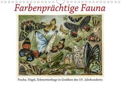 Farbenprächtige Fauna. Fische, Vögel, Schmetterlinge in Grafiken des 19 Jahrhunderts (Wandkalender 2021 DIN A4 quer) von Galle,  Jost