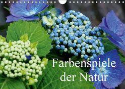 Farbenspiele der Natur (Wandkalender 2019 DIN A4 quer) von Bredenstein,  Joachim