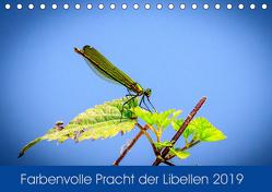 Farbenvolle Pracht der Libellen (Tischkalender 2019 DIN A5 quer) von Blickwinkel,  Dany´s