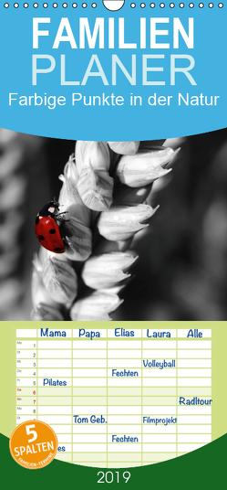 Farbige Punkte in der Natur / Geburtstagskalender – Familienplaner hoch (Wandkalender 2019 , 21 cm x 45 cm, hoch) von Poetsch,  Rolf