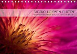 FARBKOLLISIONEN /BLÜTEN (Tischkalender 2019 DIN A5 quer) von W. Zeischold,  André