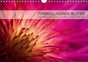 FARBKOLLISIONEN /BLÜTEN (Wandkalender 2018 DIN A4 quer) von W. Zeischold,  André