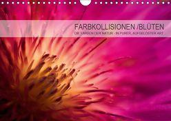 FARBKOLLISIONEN /BLÜTEN (Wandkalender 2019 DIN A4 quer) von W. Zeischold,  André