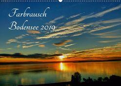 Farbrausch Bodensee (Wandkalender 2019 DIN A2 quer) von Brinker,  Sabine