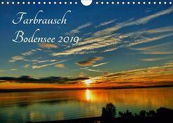 Farbrausch Bodensee (Wandkalender 2019 DIN A4 quer) von Brinker,  Sabine