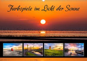 Farbspiele im Licht der Sonne (Wandkalender 2021 DIN A2 quer) von Dreegmeyer,  A.