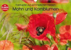 Farbtupfer auf sommerlichen Feldern – Mohn und Kornblumen (Wandkalender 2019 DIN A3 quer) von Frost,  Anja