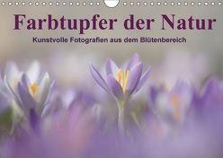 Farbtupfer der Natur / Kunstvolle Fotografien aus dem Blütenbereich (Wandkalender 2018 DIN A4 quer) von Michel,  Susan