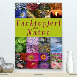 Farbtupferl der Natur (Premium, hochwertiger DIN A2 Wandkalender 2021, Kunstdruck in Hochglanz) von Cross,  Martina