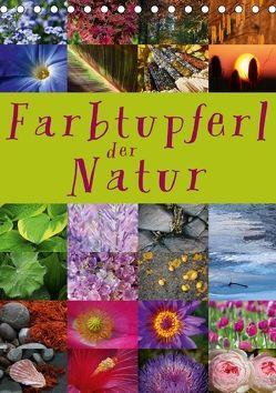 Farbtupferl der Natur (Tischkalender 2018 DIN A5 hoch) von Cross,  Martina