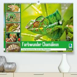 Farbwunder Chamäleon (Premium, hochwertiger DIN A2 Wandkalender 2020, Kunstdruck in Hochglanz) von CALVENDO