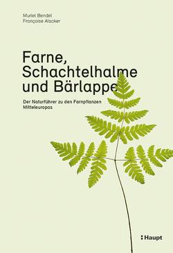 Farne, Schachtelhalme und Bärlappe von Alsaker,  Francoise, Bendel,  Muriel