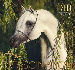 Fascination 2019 von Boiselle,  Gabriele