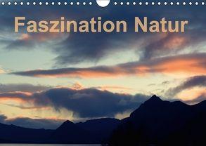Fasziantion Natur (Wandkalender 2018 DIN A4 quer) von Isemann,  Dieter