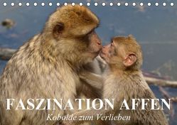 Faszination Affen. Kobolde zum Verlieben (Tischkalender 2019 DIN A5 quer) von Stanzer,  Elisabeth