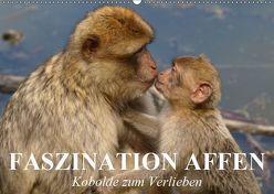 Faszination Affen. Kobolde zum Verlieben (Wandkalender 2019 DIN A2 quer) von Stanzer,  Elisabeth