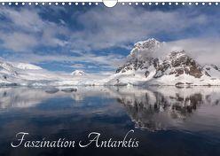 Faszination Antarktis (Wandkalender 2019 DIN A4 quer) von Altmaier,  Michael