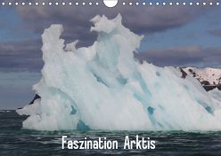 Faszination Arktis (Wandkalender 2019 DIN A4 quer) von Springer,  Heike