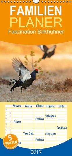 Faszination Birkhühner – Familienplaner hoch (Wandkalender 2019 , 21 cm x 45 cm, hoch) von Marklein,  Gabi