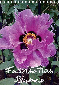 Faszination Blumen (Tischkalender 2019 DIN A5 hoch) von Hufeld,  Bernd