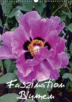 Faszination Blumen (Wandkalender 2019 DIN A3 hoch) von Hufeld,  Bernd