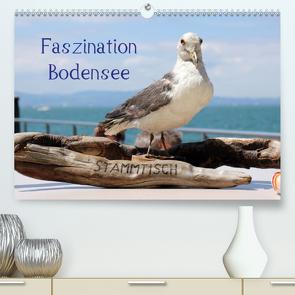 Faszination Bodensee (Premium, hochwertiger DIN A2 Wandkalender 2020, Kunstdruck in Hochglanz) von Raab,  Karsten-Thilo