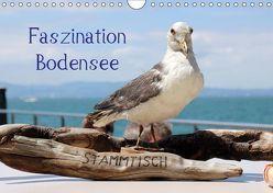 Faszination Bodensee (Wandkalender 2019 DIN A4 quer) von Raab,  Karsten-Thilo
