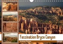 Faszination Bryce Canyon (Wandkalender 2019 DIN A4 quer) von Potratz,  Andrea