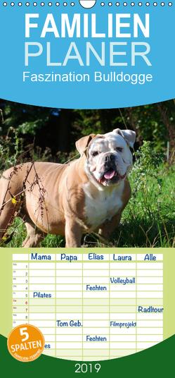 Faszination Bulldogge – Familienplaner hoch (Wandkalender 2019 , 21 cm x 45 cm, hoch) von Stanzer,  Elisabeth