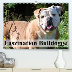 Faszination Bulldogge (Premium, hochwertiger DIN A2 Wandkalender 2020, Kunstdruck in Hochglanz) von Stanzer,  Elisabeth