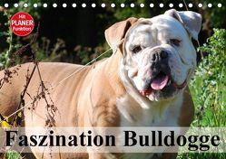 Faszination Bulldogge (Tischkalender 2018 DIN A5 quer) von Stanzer,  Elisabeth