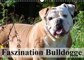 Faszination Bulldogge (Wandkalender 2018 DIN A3 quer) von Stanzer,  Elisabeth