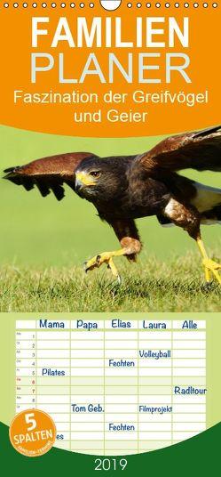 Faszination der Greifvögel und Geier – Familienplaner hoch (Wandkalender 2019 , 21 cm x 45 cm, hoch) von Müller,  Erika