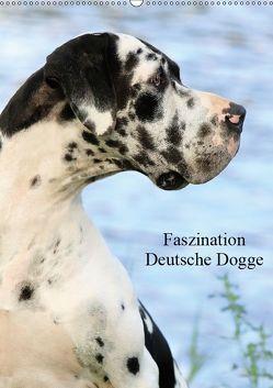 Faszination Deutsche Dogge (Wandkalender 2019 DIN A2 hoch) von Reiß-Seibert,  Marion