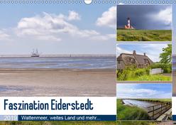 Faszination Eiderstedt (Wandkalender 2019 DIN A3 quer) von Matthies,  Axel