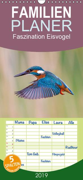Faszination Eisvogel – Familienplaner hoch (Wandkalender 2019 , 21 cm x 45 cm, hoch) von Martin,  Wilfried