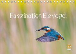 Faszination Eisvogel (Tischkalender 2019 DIN A5 quer) von Martin,  Wilfried
