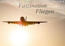 Faszination Fliegen (Tischkalender 2019 DIN A5 quer) von Estorf,  Tom
