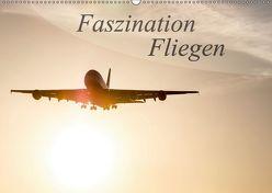 Faszination Fliegen (Wandkalender 2018 DIN A2 quer) von Estorf,  Tom