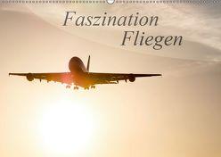Faszination Fliegen (Wandkalender 2019 DIN A2 quer) von Estorf,  Tom