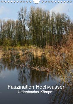 Faszination Hochwasser – Urdenbacher Kämpe (Wandkalender 2019 DIN A4 hoch) von Grobelny,  Renate