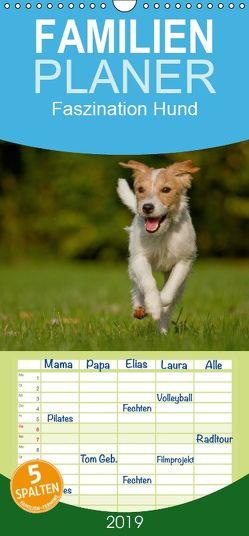 Faszination Hund – Familienplaner hoch (Wandkalender 2019 , 21 cm x 45 cm, hoch) von Bischof,  Melanie, Bischof,  Tierfotografie