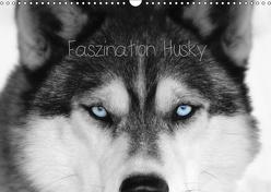 Faszination Husky (Wandkalender 2019 DIN A3 quer) von Snow Wolf Valley,  of