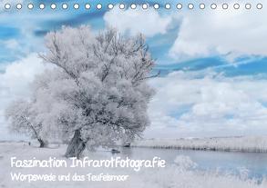 Faszination Infrarotfotografie (Tischkalender 2020 DIN A5 quer) von Arndt,  Maren